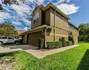 18913 Duquesne Drive, Tampa image