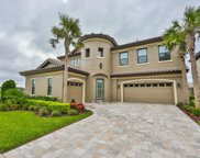 21650 Amelia Rose Way, Land O' Lakes image