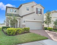 19384 Roseate Drive, Lutz image