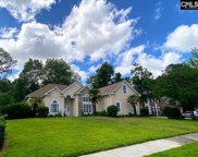 1 Hollenbeck Court, Irmo image