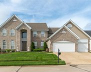 1210 Hermans Lake, Florissant image