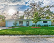 4292 Maple Street Ne, St Petersburg image