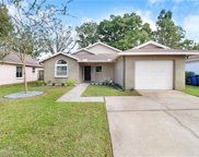 12848 Coverdale Drive, Tampa image