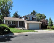 8403 South Painted Sky Street, Highlands Ranch image