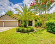 16002 Ridley Place, Tampa image
