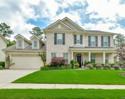 1163 Arges River  Drive, Fort Mill image