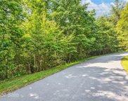 44 W Turkey Paw  Trail, Hendersonville image