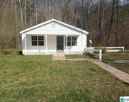 56346 Hwy 231, Oneonta image