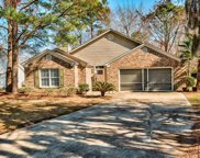 12 Lake Meadow Ln., Pawleys Island image