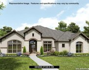 1523 Conneterre, New Braunfels image