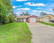 11635 Chapman Ave, Bonita Springs image