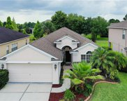 3247 Sago Point Court, Land O' Lakes image