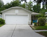 18172 Canal Pointe Street, Tampa image