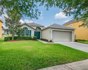 13226 Waterford Castle Drive, Dade City image