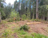 1 XXX SW JH Rd, Port Orchard image