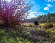 49.57 Acres Wilhite Road, Sevierville image