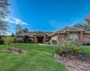 107 Pine Valley Court, Debary image