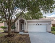 12619 Bramfield Drive, Riverview image