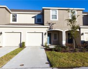7012 Summer Holly Place, Riverview image
