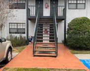 206 Poinsettia Pine Court Unit 202, Tampa image