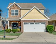 4971 Paddy Trace, Spring Hill image