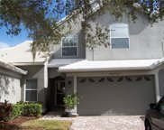 13742 Eagles Walk Drive, Clearwater image