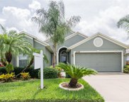 11134 Rodeo Lane, Riverview image