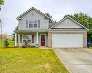 225 Pomegranate Lane, Wellford image