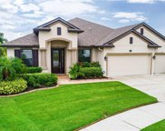 11632 Iris Spring Court, Riverview image
