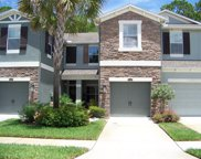 12514 Streamdale Drive, Tampa image