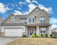 1011  Ivey Court, Indian Land image