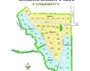916 Barksdale Creek Lane, Fairview image