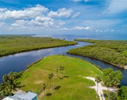 Sea Edge, Punta Gorda image
