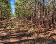 Tract 1 North Bend Road, Wilmington image