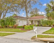 201 Brookside Court, Palm Harbor image