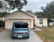11627 Wellman Drive, Riverview image