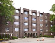 4624 North Commons Drive Unit 401, Chicago image