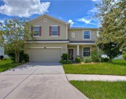 12412 Fairlawn Drive, Riverview image