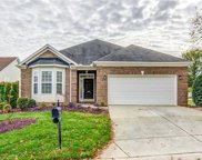 823  Platinum Drive, Fort Mill image
