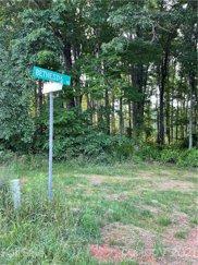 1132 Bethesda S Road Unit #8, Statesville image
