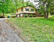 154 Woodard Drive, Oneonta image