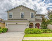 10413 Avian Forrest Drive, Riverview image
