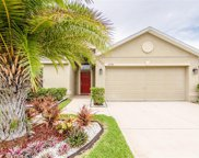 12336 Ballentrae Forest Drive, Riverview image