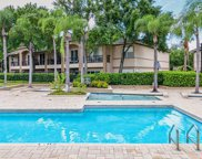 805 Normandy Trace Road, Tampa image