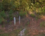163 Winding Forest  Drive, Troutman image