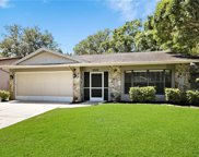 8544 White Springs Drive, New Port Richey image