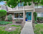 4621 Adobe River Ct, San Jose image