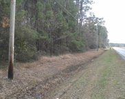 21.8 Acres Highway 701 South, Conway image