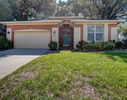 892 Cool Springs Circle, Ocoee image