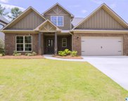 126 Cheshire Cove Lane, Meridianville image